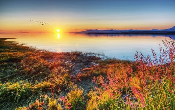 Фото обои закат, птицы, река, Canada, Фотограф IvanAndreevich