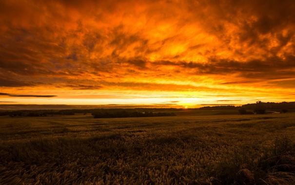 закат поле джипы небо  № 3800496  скачать