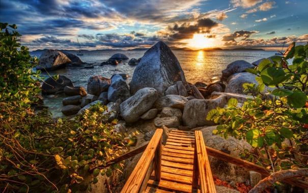 Фото обои море, листья, облака, закат, ветки, природа, камни