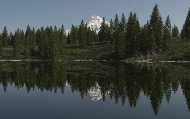 Фото обои лес, деревья, озеро, отражение, гора, ель, арт