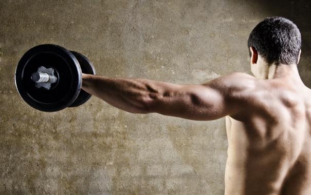 Фото обои muscle, back, bodybuilder, barbell
