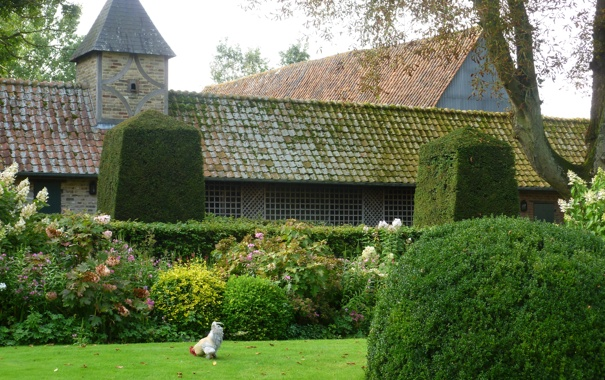 Фото обои трава, деревья, дизайн, дом, газон, сад, кусты