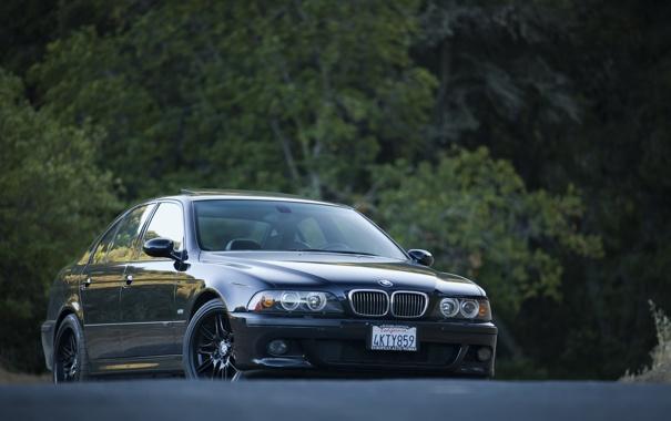 Фото обои BMW, e39