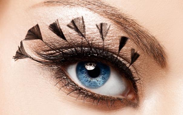 Фото обои девушка, глаз, ресницы, перья, макияж, тени