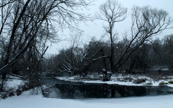 Фото обои зима, лес, река, снег, деревья