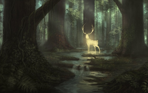 Картинки по запросу лес арт
