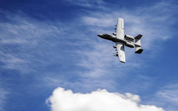 Фото обои небо, штурмовик, A-10, Thunderbolt II, одноместный