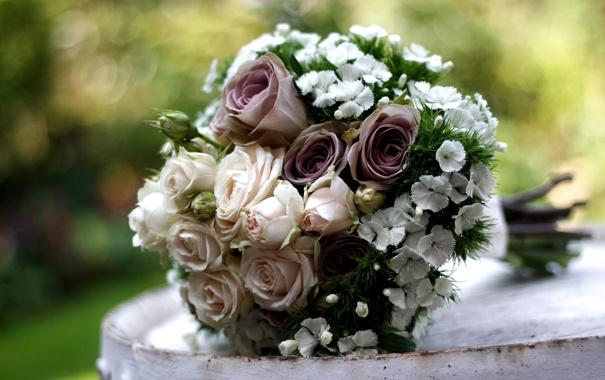 Фото обои цветы, розы, букет, гвоздика, композиция
