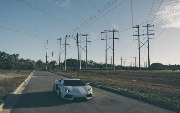 Фото обои дорога, белый, тень, white, lamborghini, road, aventador