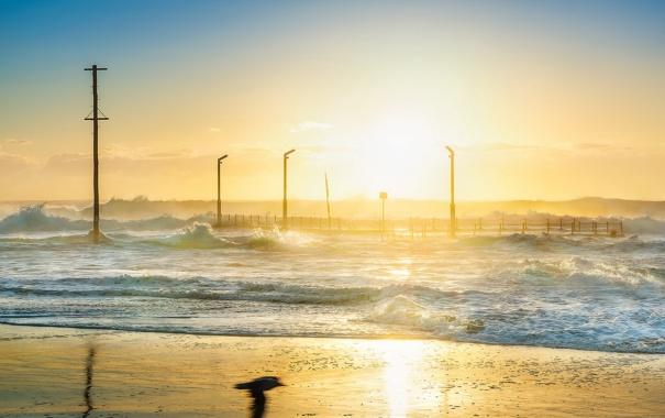 Фото обои море, волны, свет, утро