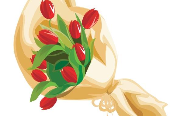 Фото обои цветы, букет, тюльпаны, красные, упаковка, белый фон
