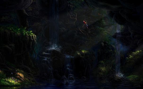 Фото обои лес, птицы, джунгли, In the jungle