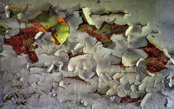 Фото обои фон, текстура, стена