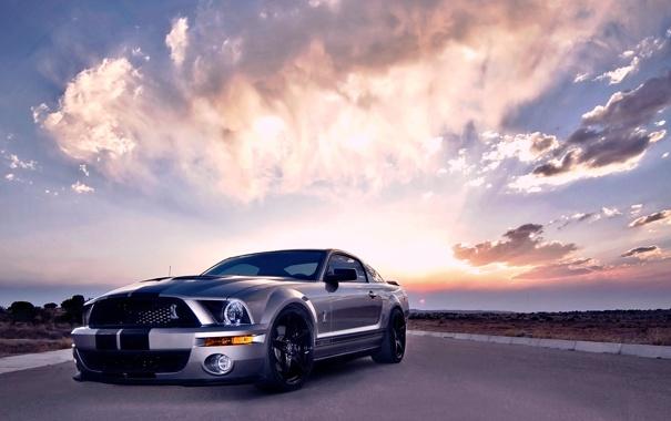 Фото обои Mustang, Ford, Shelby, GT500, Cobra