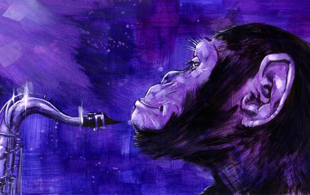 Фото обои арт, обезьяна, art, саксофон