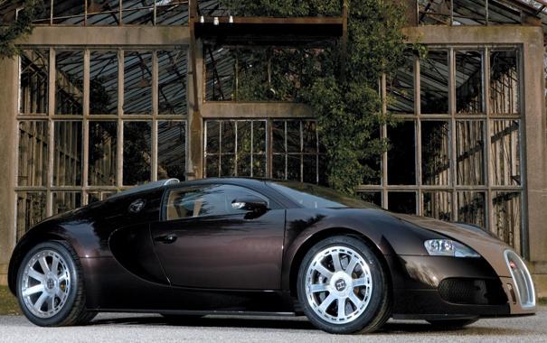 Фото обои стиль, veyron, bugatti, оранжерея
