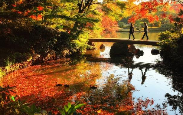 Фото обои осень, листья, вода, деревья, пейзаж, отражение, люди