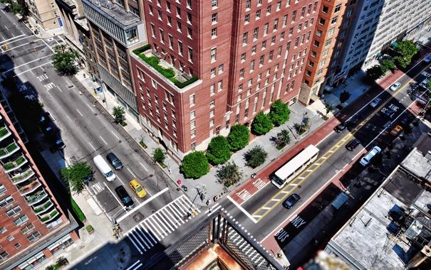 Фото обои деревья, город, улица, дома, перекресток