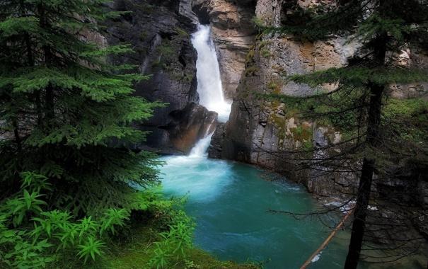 Фото обои скала, озеро, водопад, ель