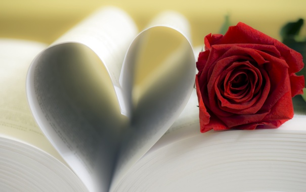 Фото обои сердце, роза, книга, red, love, rose, flower