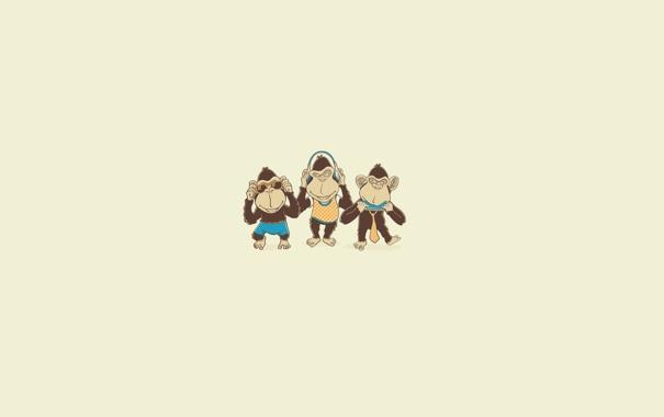 Фото обои музыка, минимализм, наушники, очки, три, обезьяны, monkey