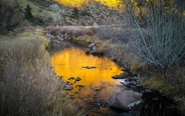 Фото обои осень, трава, река, ручей, камни, склон