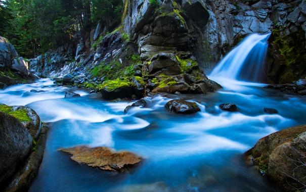 Фото обои лес, деревья, река, ручей, камни, водопад, Waterfall