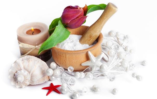 Фото обои капли, цветы, тюльпан, свечи, spa, shells, seashells