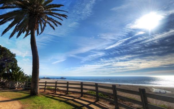 Фото обои море, вода, пальма, пальмы, фото, океан, обои