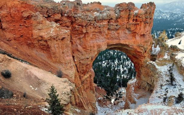 Фото обои США, пейзаж, скалы, Arches National Park, Юта, арка, деревья