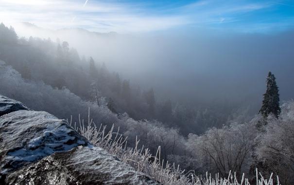 Фото обои зима, пейзаж, горы, туман