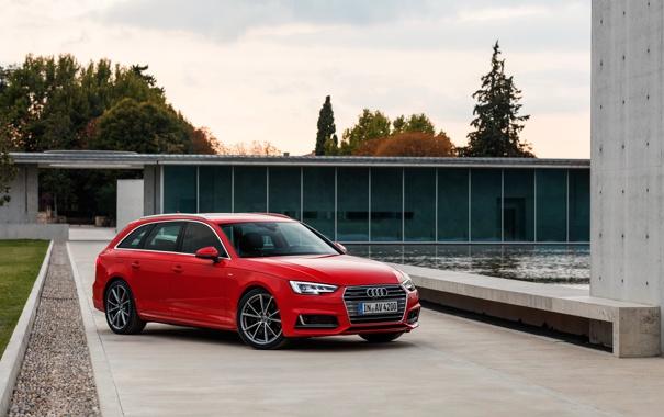 Фото обои Audi, ауди, quattro, универсал, Avant, 2015, авант