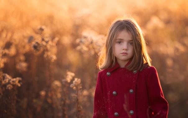 Фото обои свет, девочка, пальто, Golden, боке