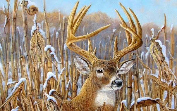 Фото обои зима, небо, снег, рисунок, картина, олень, рога