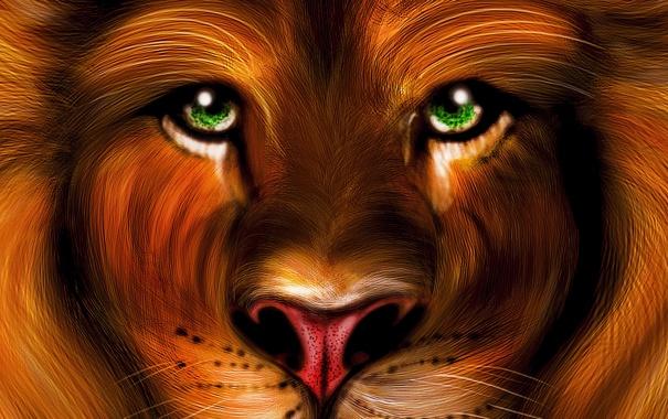 Фото обои глаза, взгляд, обои, рисунок, лев, зеленые, живопись
