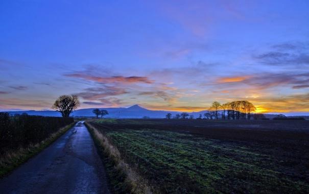 Фото обои дорога, поле, пейзаж, закат