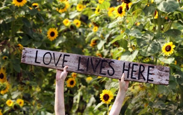 Фото обои фон, настроение, надпись, love lives here