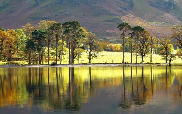 Фото обои деревья, пейзаж, озеро