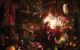 Обои девушка, цветы, птица, книги, череп, стул, ведьма