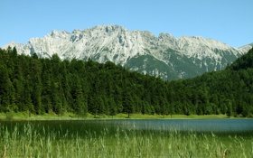 Обои вода, деревья, горы, фото, пейзажи, леса