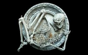 Обои останки, скелет, гравировка