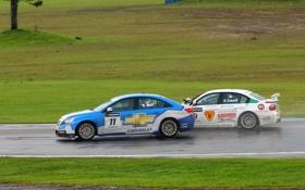 Картинка Chevrolet, sport, Cruze, WTCC