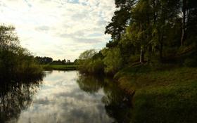 Обои лес, небо, пейзаж, река, настроение, берег, прогулка