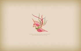 Обои птица, линии, creativity
