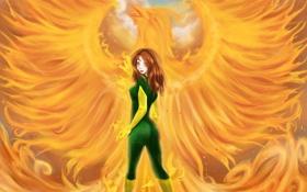 Обои взгляд, девушка, фантастика, огонь, птица, волосы, костюм