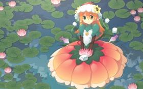Картинка цветы, болото, аниме, платье, Девочка, кувшинки