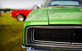 Обои зелёный, dodge, charger