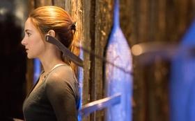 Картинка Shailene Woodley, Divergent, если ты другой, Ты опасен