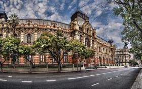 Картинка дорога, деревья, улица, здание, Аргентина, Buenos Aires