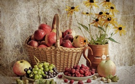 Картинка малина, корзина, яблоки, виноград, натюрморт